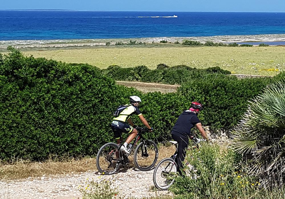 Ciclista pedala tra la vegetazione vicino al mare nel Sinis